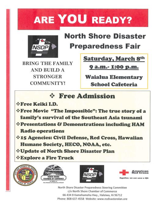 Disaster Fair Flyer 2-14