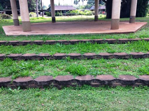 Before the work began on the Waialua Bandstand, the steps were filled with thorny weeds.