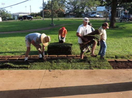 Volunteers at work on the steps of the  Waialua Bandstand.