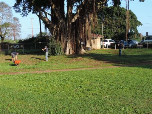 Work was done on the entire park surrounding the Waialua Bandstand.