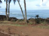 Cleared Waimea End